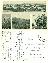 Velké Pavlovice - pohlednice okénková
